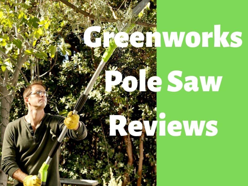 Greenworks Pole Saw Reviews